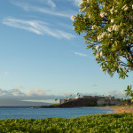 10 Reasons to Fall in Love with Maui