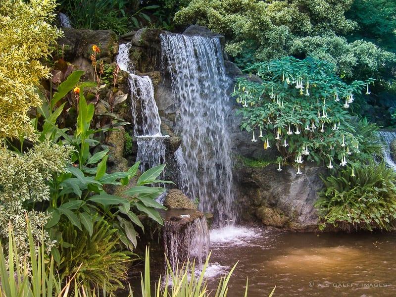 Los Angeles County Arboretum Luxury Travel Blog
