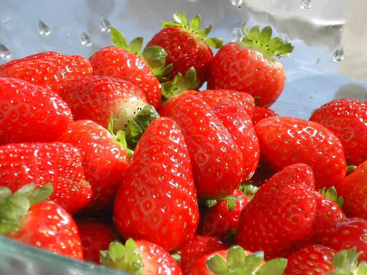 strawberries-1522699-1280x960